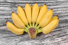 Yellow cultivated banana, Ripe cultivated banana. royalty free stock image