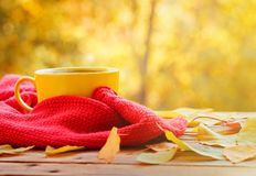 Cup of hot tea or coffee on nature background. Concept autumn mood. Royalty Free Stock Photo