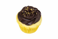 Yellow Cupcake with Chocolate Frosting Royalty Free Stock Photography