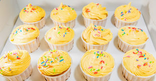 Yellow Cupcakes II Royalty Free Stock Photography