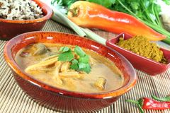 Yellow Curry Stock Photography
