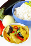 Yellow curry with pork Royalty Free Stock Image