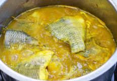 Yellow curry. With tilapia and Bamboo shoots Stock Photography