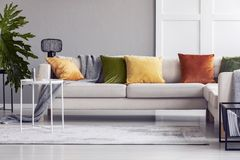 Yellow cushions on white couch in modern living room interior with table and plant. Real photo. Yellow cushions on white couch in modern living room interior royalty free stock photography