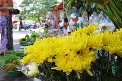Yellow cut chrysanthemum bunch at street vendor retail at traditional local fresh market. Yellow cut chrysanthemum bunch at street vendor retail stall at stock photography