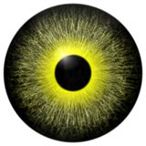 Yellow 3d texture eye with black fringe. And lines Royalty Free Stock Photography