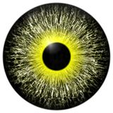 Yellow 3d texture eye with black fringe. And lines Royalty Free Stock Photo