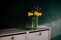 Yellow daffodil flowers with purple tulip blooming in vase with green wall next wicked basket Stock Photos