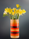 Yellow daffodils and freesias flowers in a vivid colored vase, close up, isolated, gradient background Royalty Free Stock Image