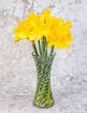 Yellow daffodils in a glass vase - Image stock image