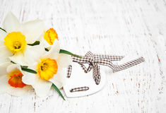 Yellow daffodils with heart Stock Photography