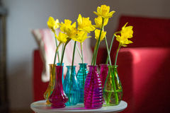 Yellow daffodils in interior Royalty Free Stock Image