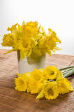 Yellow dafodills in white bucket Stock Images