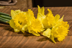 Yellow dafodills on wooden table Royalty Free Stock Photography