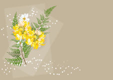 Yellow Dahlia flower .yellow flower with fern on white background. Dahlia flower .yellow flower with fern on white background , illustration,for cared or Stock Photos