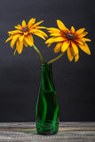 Yellow dahlia flowers. In pot on wood Royalty Free Stock Photography