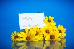 Yellow daisies Stock Image