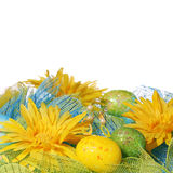 Yellow Daisies with Easter Eggs Royalty Free Stock Photography