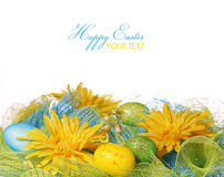 Yellow Daisies with Easter Eggs over white Stock Image