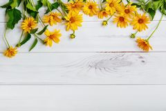 Yellow daisy flowers on light wooden background. Stock Image