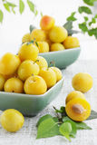 Yellow damson plum Royalty Free Stock Image