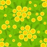 Yellow dandelion seamless pattern. Vector sammer background Royalty Free Stock Photo