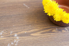 Yellow dandelions. In clay pot on a wooden surface royalty free stock photos