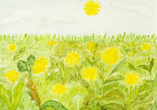 Yellow dandelions, painting. Meadow with yellow dandelions, hand painted picture, watercolours Royalty Free Stock Photo