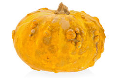 Yellow decorative pumpkin on a white background Royalty Free Stock Image