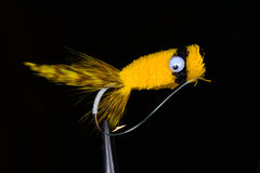 Yellow deer hair bass bug popper Stock Photos