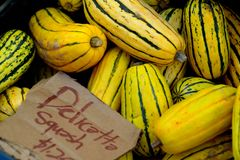 Yellow delicata squash Stock Images