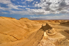 Yellow desert. Royalty Free Stock Images