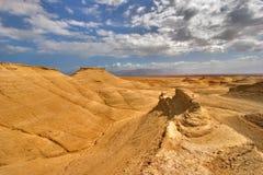Yellow desert. Royalty Free Stock Images