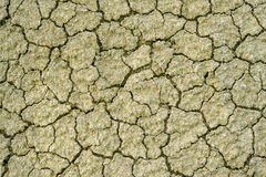 Yellow desert soil surface Stock Image