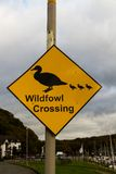 Wildfowl crossing sign. Yellow diamond sign warning of wild birds crossing road Royalty Free Stock Images