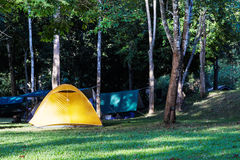 Yellow dome tent in camping Stock Photos