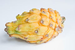 Yellow Dragon Fruit. A yellow dragon fruit isolated against a white background Stock Image