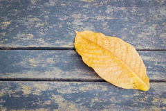 Yellow dried autumn leaf on wooden background with copyspace Royalty Free Stock Photos