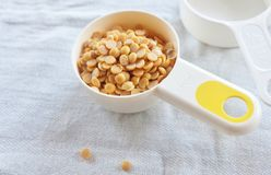 Yellow Dried Soybeans in A Measuring Spoon. Cuisine and Food, Dried Soybeans or Edamame Seeds in A Measuring Spoon royalty free stock photography