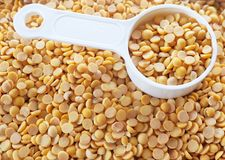 Yellow Dried Soybeans in A Measuring Spoon. Cuisine and Food, A Measuring Spoon Full of Dried Soybeans or Edamame Seeds in A Wooden Tray royalty free stock photos
