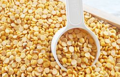 Yellow Dried Soybeans in A Measuring Spoon. Cuisine and Food, A Measuring Spoon Full of Dried Soybeans or Edamame Seeds in A Wooden Tray royalty free stock photo