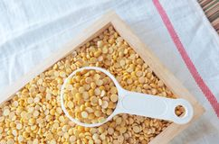 Yellow Dried Soybeans in A Measuring Spoon. Cuisine and Food, Top View of A Measuring Spoon Full of Dried Soybeans or Edamame Seeds in A Wooden Tray stock photo
