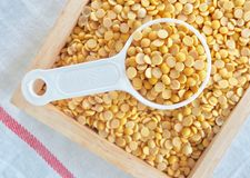 Yellow Dried Soybeans in A Measuring Spoon. Cuisine and Food, Top View of A Measuring Spoon Full of Dried Soybeans or Edamame Seeds in A Wooden Tray stock photos