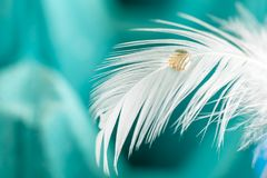 Yellow droplet on white feather. Macro photography for a yellow droplet on white feather with green background Royalty Free Stock Photo