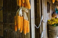 Yellow dry corn on bamboo wood Stock Photo