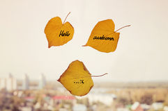Yellow dry leaf with inscription Autumn written on it Royalty Free Stock Images