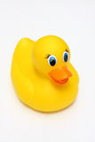 Yellow Duck. Yellow rubber duck on a white background royalty free stock image