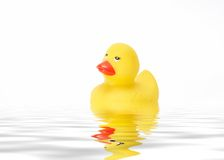 Yellow duck. Yellow toy duck floating in water Royalty Free Stock Images