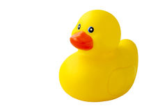 Yellow Duck. Plastic yellow duck toy isolated on white background stock image