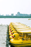 Yellow duck boat Stock Image